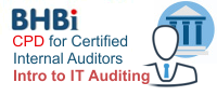 Introduction To Information Systems & IT Auditing