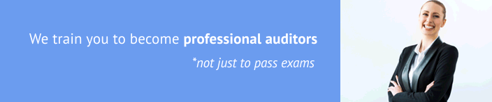 training you to become professional auditors